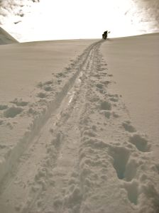 tracks ski touring Mission WOW