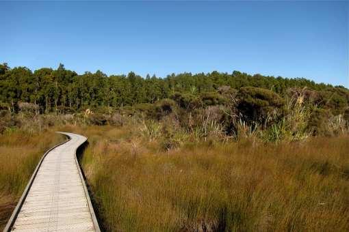 Hapuka Estuary Walkway C